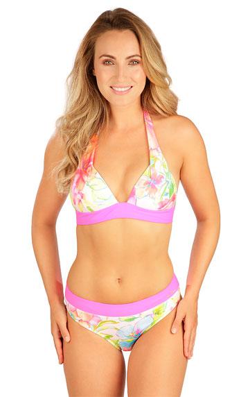 Dvoudílné plavky > Plavky kalhotky středně vysoké. 6B042
